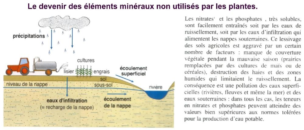 http://imagesbiogeolfxm.free.fr/alimentation/original/engrais%20et%20pollution.jpg